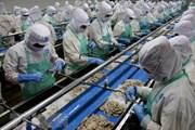 Thủy sản Việt Nam tìm chỗ đứng vững chắc thị trường châu Âu