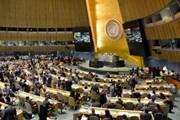 Gần 130 nước dự hội nghị về gắn kết chặt chẽ hòa bình với phát triển