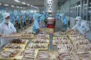 Việt Nam khẳng định quyết tâm chống đánh bắt cá bất hợp pháp