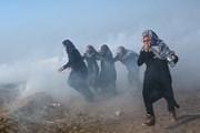 Palestine đề nghị ICC điều tra cáo buộc Israel lạm dụng nhân quyền