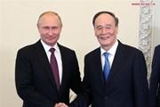 Tổng thống Nga Putin gặp Phó Chủ tịch Trung Quốc Vương Kỳ Sơn