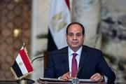 Việt Nam là bạn, đối tác tin cậy của Ai Cập ở khu vực Đông Nam Á