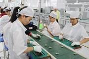 Hàn Quốc hỗ trợ doanh nghiệp thực hiện dự án lớn ở Việt Nam, UAE
