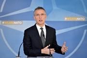 Lãnh đạo 29 nước thành viên dự Hội nghị thượng đỉnh NATO