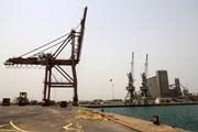 Houthi sẵn sàng nhường quyền kiểm soát cảng Hodeida cho Liên hợp quốc