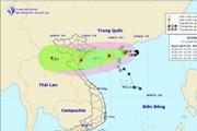Nam Định: Theo dõi chặt tình hình bão số 4, cảnh báo kịp thời cho dân