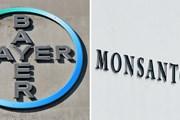 Bất chấp bê bối, Bayer sáp nhập Monsanto vào hoạt động kinh doanh