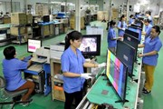 Kim ngạch thương mại Việt Nam-Séc tăng liên tục trong 3 năm