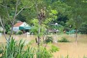 Nghệ An: Lũ trên các sông tiếp tục xuống, vẫn tiềm ẩn nguy cơ sạt lở