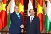 Tuyên bố chung Việt Nam-Hungary: Đối tác hiệu quả và thực chất