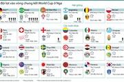 [Infographics] Thành tích của 32 đội lọt vào vòng chung kết World Cup