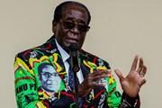 Tổng thống Zimbabwe Robert Mugabe yêu cầu tổ chức họp nội các