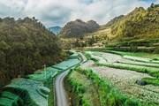 ADB duyệt khoản vay 150 triệu USD hỗ trợ bốn tỉnh đông bắc Việt Nam