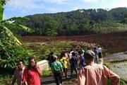 Lở đất kinh hoàng ở Indonesia, ít nhất 11 người mất tích