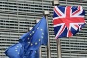 Hội nghị thượng đỉnh EU thảo luận về ngân sách dài hạn hậu Brexit