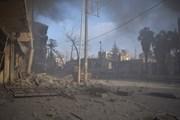 Qatar công bố khoản viện trợ giải quyết tình hình nhân đạo ở Syria