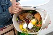 Gần 150.000 tấn lương thực bị vứt bỏ mỗi ngày tại Mỹ