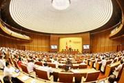 Đại biểu Quốc hội: Kinh tế đã có mức tăng trưởng ngoạn mục