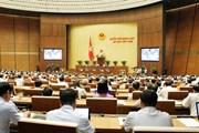 """Đại biểu Quốc hội kiến nghị về """"độ trễ"""" giữa luật và nghị định"""
