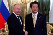 Ông Putin và ông Abe nhất trí hướng tới hiệp định hòa bình