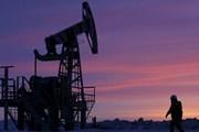 Giá dầu châu Á giảm do ba nhà sản xuất dầu hàng đầu tăng sản lượng
