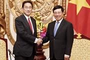 Phó Thủ tướng Phạm Bình Minh gặp nguyên Bộ trưởng Ngoại giao Nhật Bản