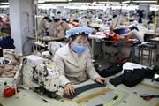 Nhiều doanh nghiệp Hàn Quốc muốn đầu tư vào Triều Tiên