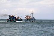 Cà Mau: Sóng lớn đánh chìm 2 tàu cá, một ngư dân mất tích