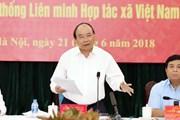Thủ tướng: Hợp tác xã có sứ mệnh quan trọng trong quá trình hội nhập