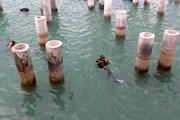 Bắt đầu tiến hành khai quật khảo cổ học tàu cổ đắm Dung Quất