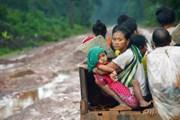Chính phủ Lào tuyên bố dừng mọi hợp đồng dự án thủy điện mới