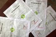 Nhộn nhịp thị trường bán giấy nghỉ ốm giả ở tỉnh Đồng Nai