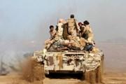 Quân đội Yemen kiểm soát miền Tây, tiến tới giải phóng Hodeida