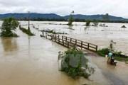 Kiến nghị dùng 550 tỷ đồng ngân sách dự phòng khắc phục hậu quả bão lũ