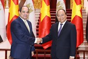 Thủ tướng: Sẽ thúc đẩy triển khai các cam kết giữa Việt Nam và Ai Cập