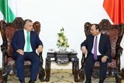 Việt Nam luôn ưu tiên củng cố phát triển quan hệ với Hungary