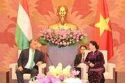 Chủ tịch Quốc hội Nguyễn Thị Kim Ngân tiếp Thủ tướng Hungary