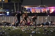 Sự kiện quốc tế 1-7/10: Xả súng đẫm máu tại Mỹ, công bố giải Nobel