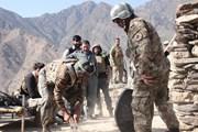 Đánh bom liều chết nhằm vào lực lượng an ninh Pakistan