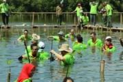Ngày Trồng rừng ngập mặn ASEAN tại công viên Angke Kapuk