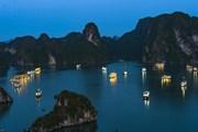 Đình chỉ hoạt động 3 tàu du lịch có vi phạm trên Vịnh Hạ Long