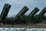 Tổng thống Putin: 59 nước mua vũ khí của Nga trong năm 2017