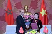 Việt Nam-Maroc thúc đẩy quan hệ ngoại giao nghị viện song phương