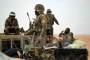 The National: IS có thể tái chiếm miền Bắc Iraq một cách dễ dàng