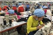 ITC đồng hành với Việt Nam cải thiện năng lực cạnh tranh doanh nghiệp