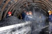 Tai nạn lao động khiến một công nhân ngành than tử vong