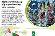 [Infographics] Rác thải từ nhựa đang hủy hoại môi trường sống