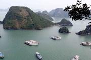 Sẽ xử phạt tàu Hoàng Phương bị du khách Australia tố lừa đảo