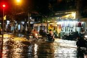 Lãnh đạo phường bị phê bình vì để rác làm tắc hệ thống thoát nước