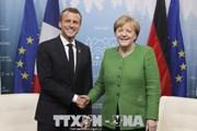 Đức và Pháp muốn tái cơ cấu nợ Eurozone một cách dễ dàng hơn